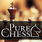 纯粹国际象棋