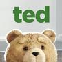 耍宝的泰迪熊
