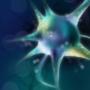 神经细胞战争