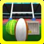 西瓜橄榄球