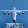 涡轮螺旋桨飞行模拟器修改版