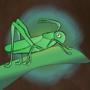昆虫历险记:跳跃蚂蚱