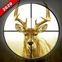 野鹿狙击手
