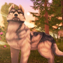 狼传说:家园与爱心(作弊器) Mod