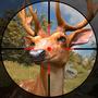 狂野射击猎人:狙击靶场