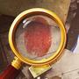 福尔摩斯之旅-隐藏物品